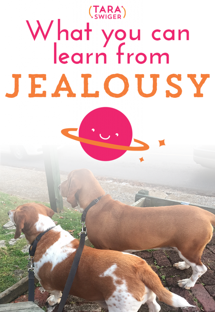 Learnfromjealousy